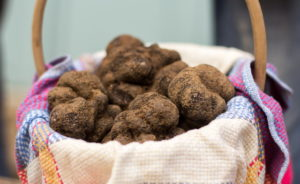 marché aux truffes de Lalbenque Lot